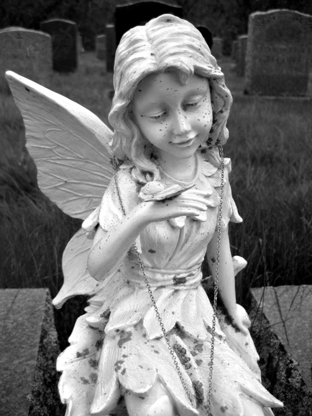 fairy-butterfly-notre-dame-2