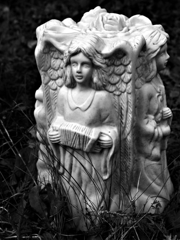 Angels with Musical Instruments Park Lawn A