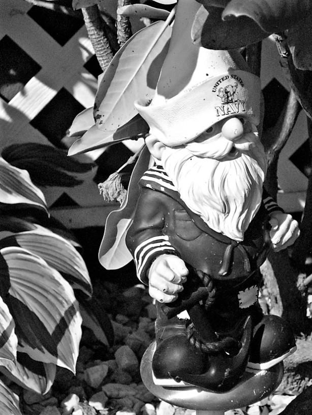 sailor gnome hampton NH (2)